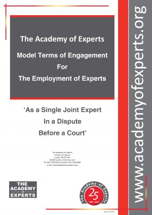 Model Terms of Engagement - SJE - Cover Page